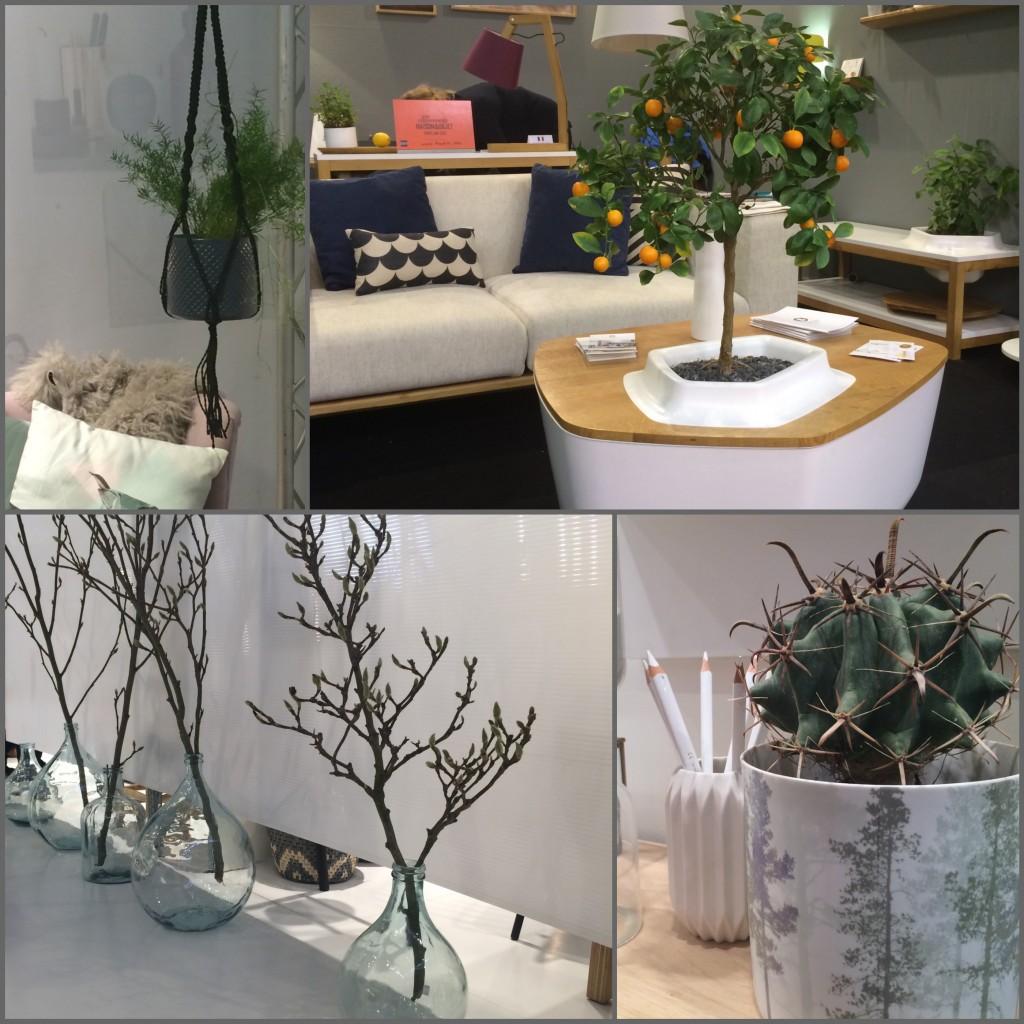 Tendance verdure plante d'intérieur maison et objet 2015.
