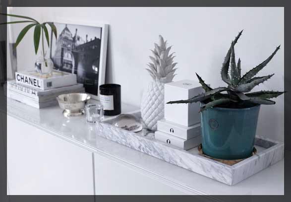 plateau en marbre et cactus.