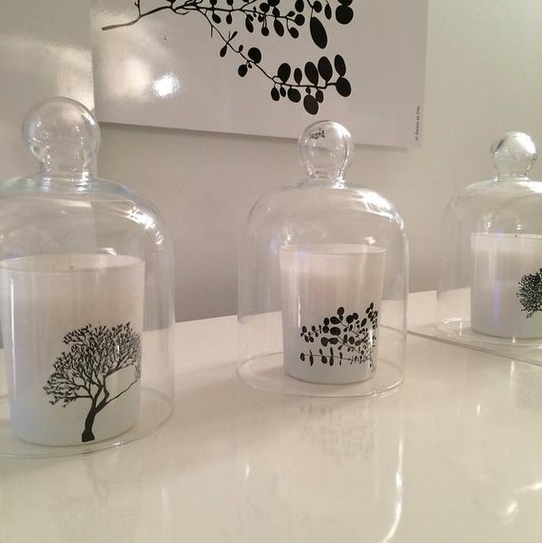 Bougies senteur arbre eucalyptus santal  création Élisabeth de Feydeau nez Guerlain