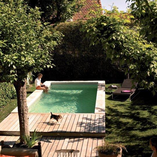 piscine dans un petit jardin en ville