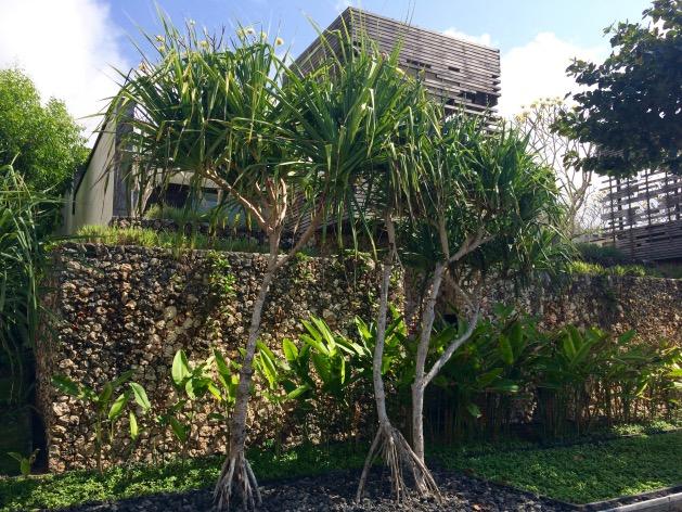 alila villas uluwatu et la nature tropical