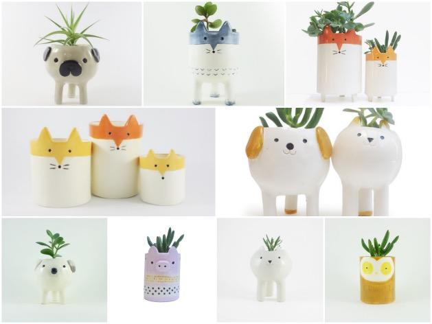 pot de fleurs succulente animal chien chat