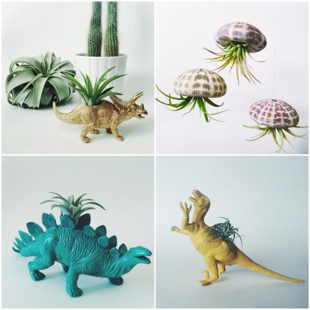 Pot pour succulente dinosaure en plastique
