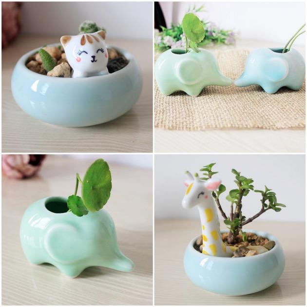 pot de fleurs elephant cactus kawai