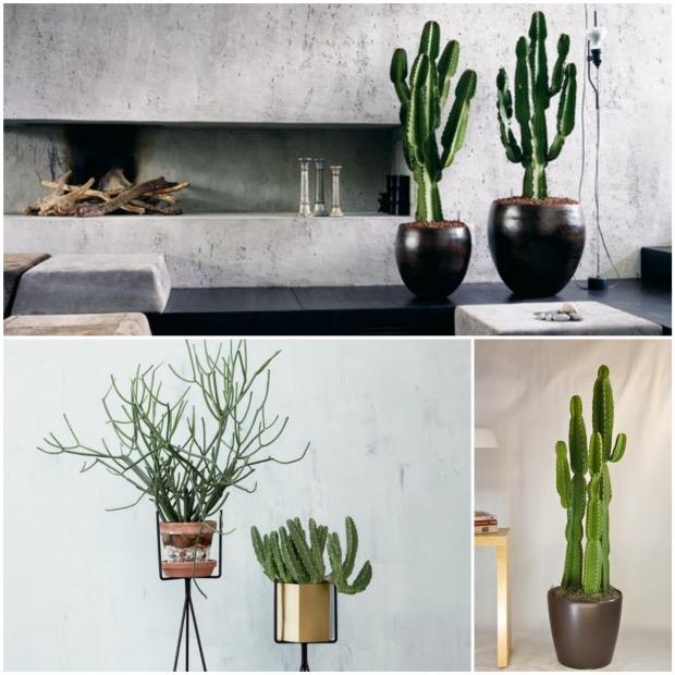cactus crayon pot ferm living choisir sa plante d'intérieur