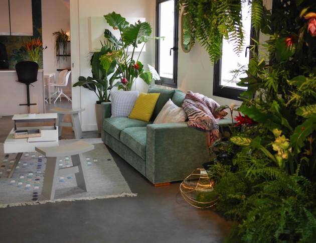 caoutchouc plante déco salon urban jungle blogger