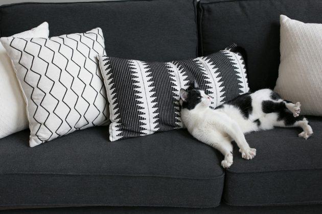 Appartement et salon gris et blanc visite décoration canape noir graphique