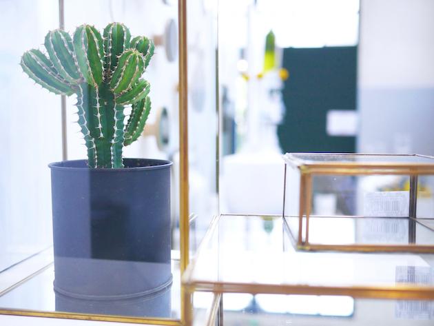coming b design français showroom longjumeau