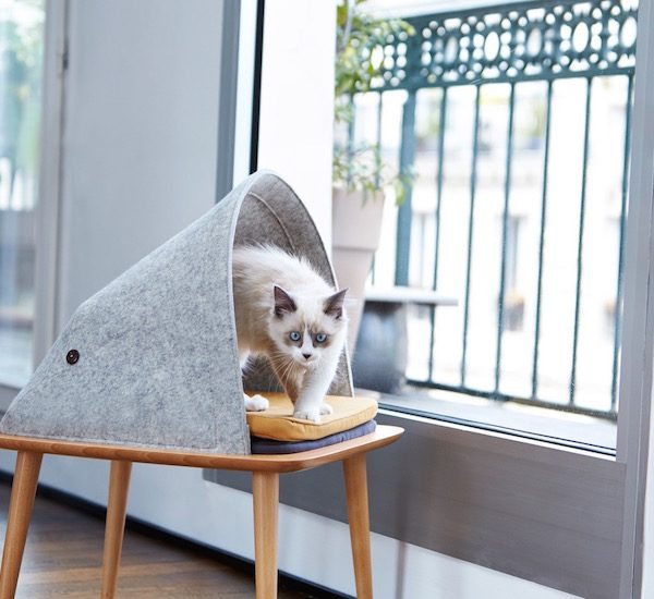 design animal litiere maison chat pied scandinave