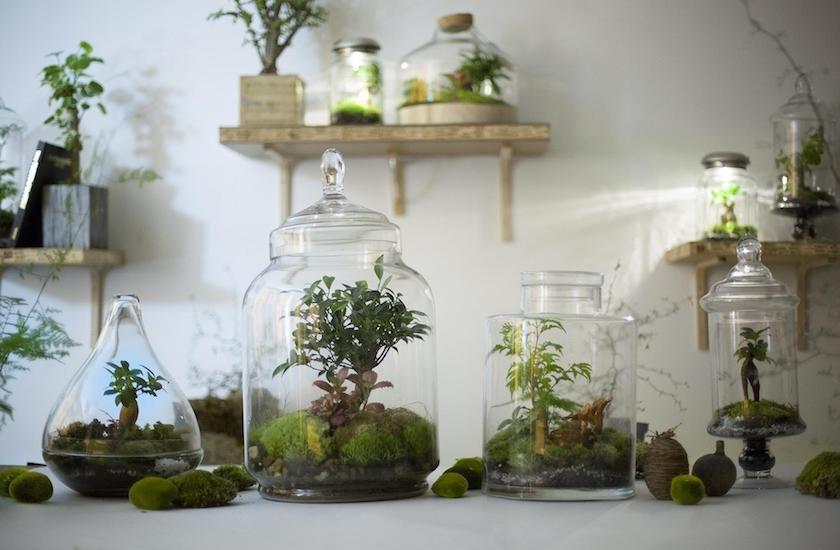 Green Factory les jardins autosuffisants de Noam Levy