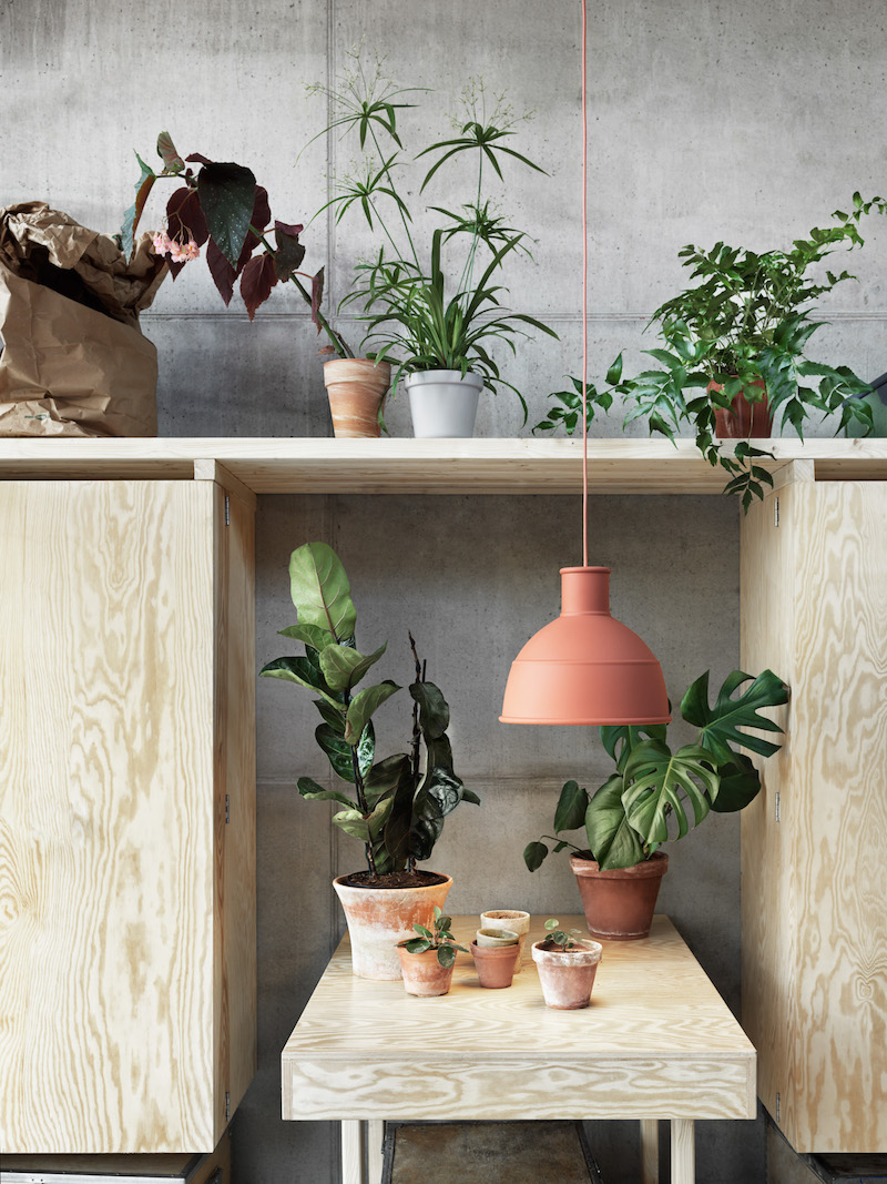 suspension lampe terracotta plante salon muuto