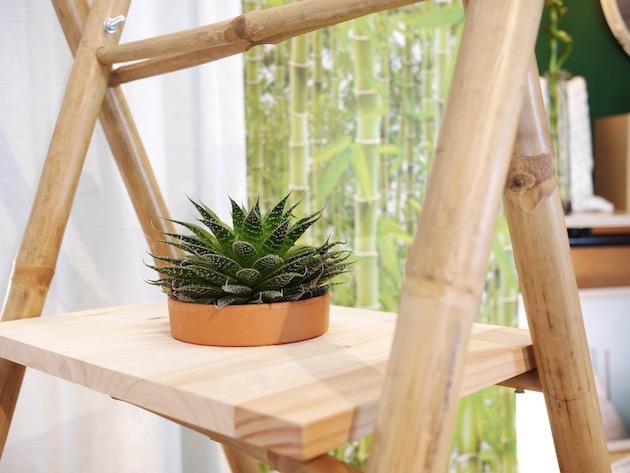 étagère percée pour pot de fleurs plante aromathique