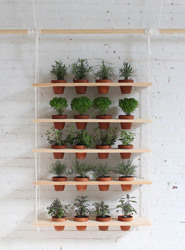 jardiner en appartement etagere a plantes aromatiques diy