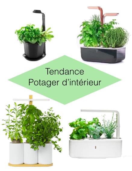 jardiner en appartement potager connecte