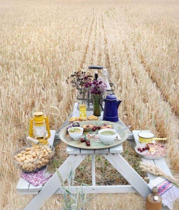pique nique champetre dans les champs de ble