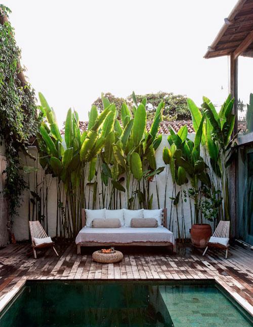 idee jardiniere masquer le mur voisin jardin