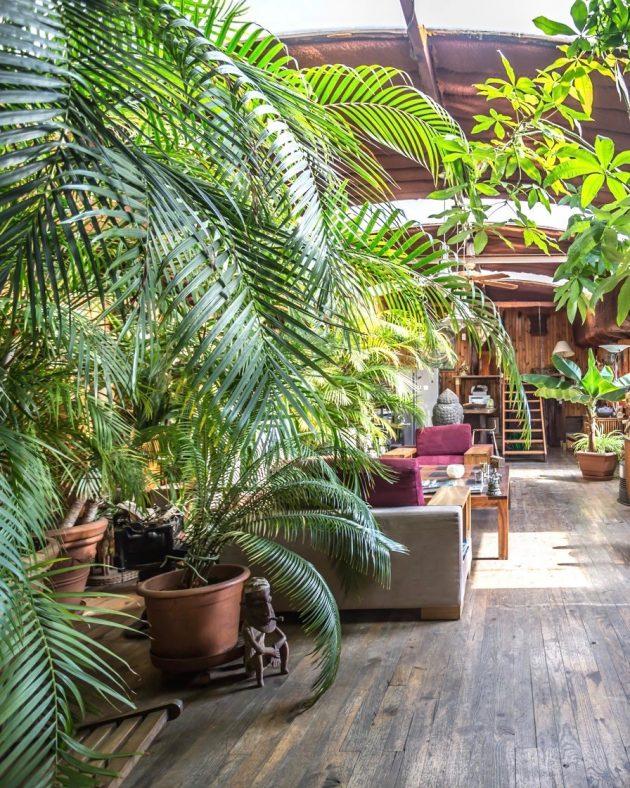 espaces atypiques immobilier deco urban jungle peniche