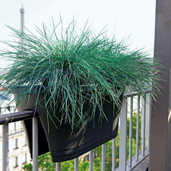 idee jardiniere balcon parisien vue tour eiffel