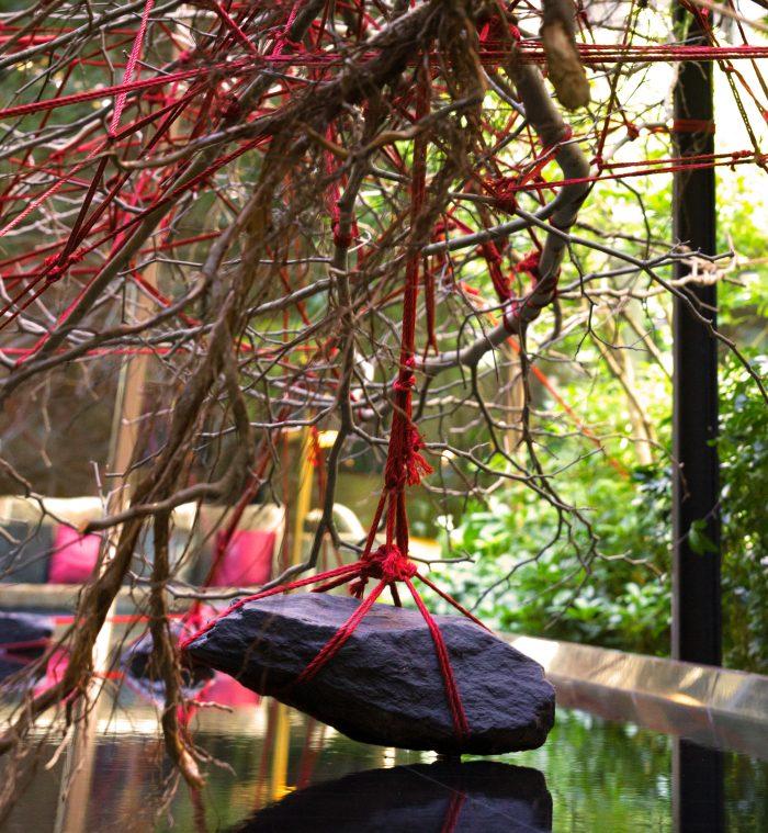 christophe gautrand blog noeud mandarin arbre tronc