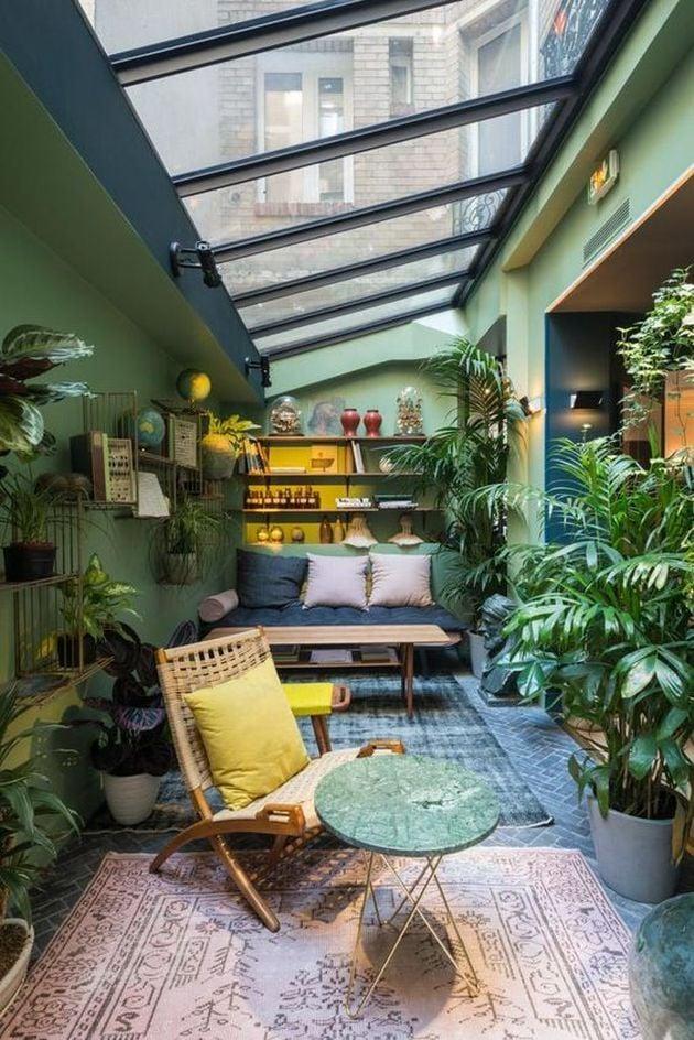 serre interieur plantes
