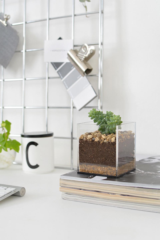 terrarium a faire soit meme dans vase récup carré facile