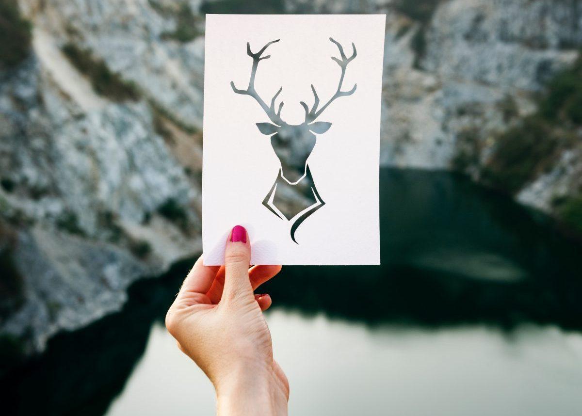trophée déco tete de cerf en bois blog decoration enfant