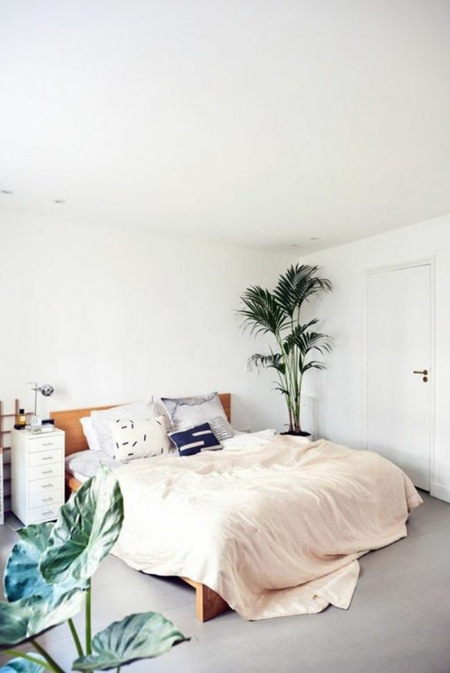 couleur de chambre blanc nature simple sobre
