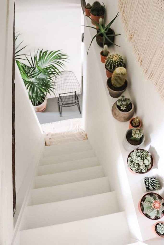 deco bucolique escaliers blancs cactus