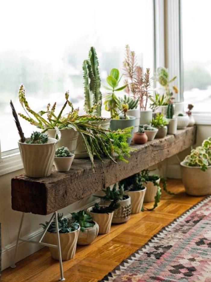 deco bucolique banc bois plantes vertes
