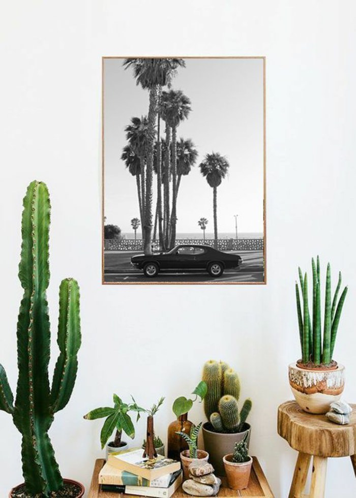 maison californienne cactus plantes californie palm springs tableau noir et blanc