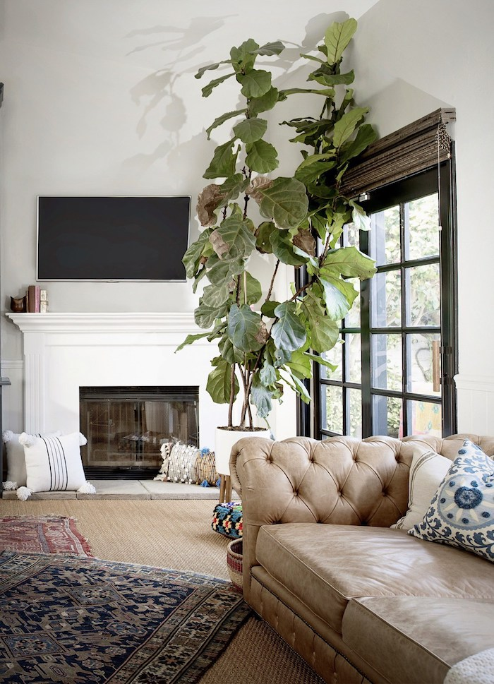 maison californinenne salon canape cuir boho decoration plantes
