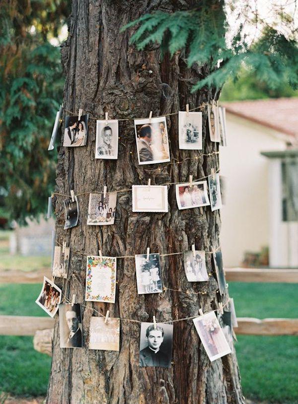 deco ceremonie laique arbre photo guirlande