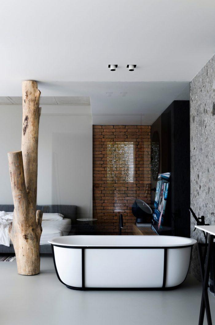 appartement esprit loft baignoire design