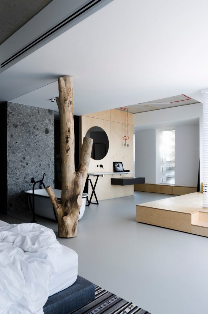appartement esprit loft arbre verrière salle de bain