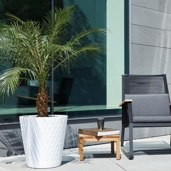 elho pot plante géant design blog deco clemaroundthecorner