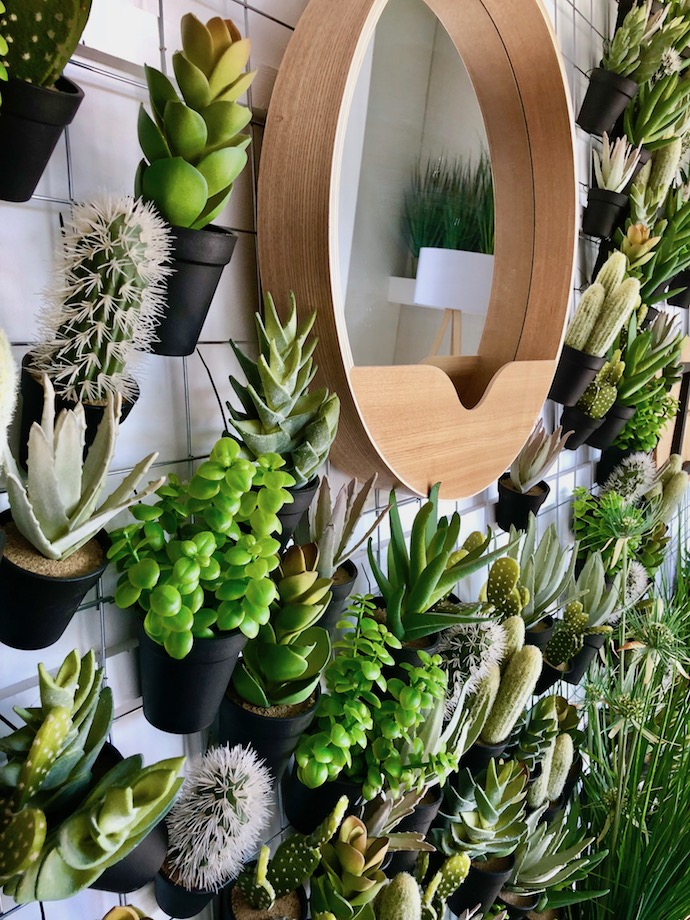 meubles mur cactus plante succulente grillage pegboard - Blog déco - Clem Around The Corner
