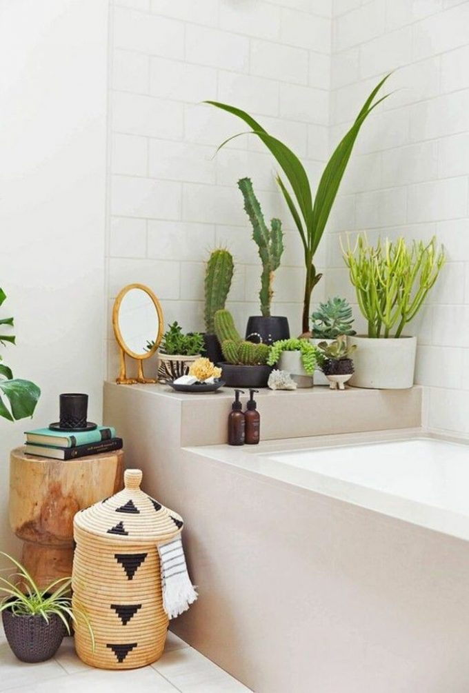 salle de bain theme nature nature urban jungle baignoire grise cactus panier rotin osier - Blog déco - Clem around the corner