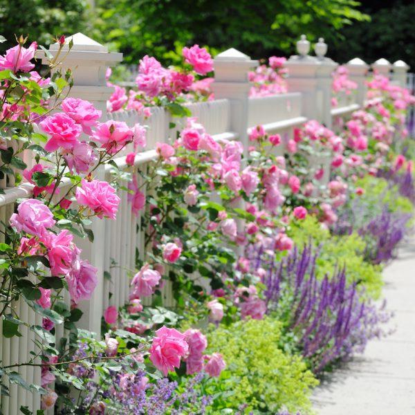 Fausse chemin e la d co trompe l 39 oeil clem around the corner for Conseil deco jardin