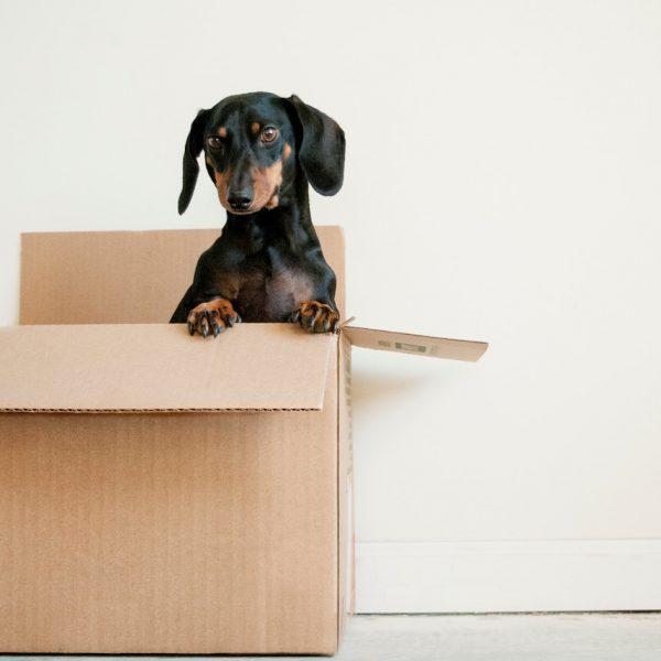 homebox avis self stockage garde meuble paris blog deco clemaroundthecorner
