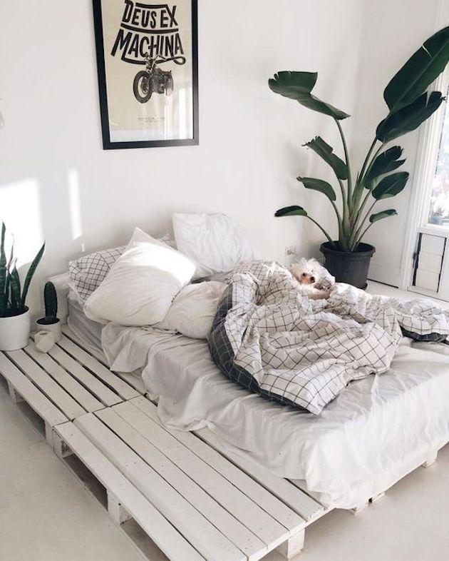 chambre blanche cosy hygge chien plantes verte faux palmier bananier géant style scandinave - blog déco - clem around the corner