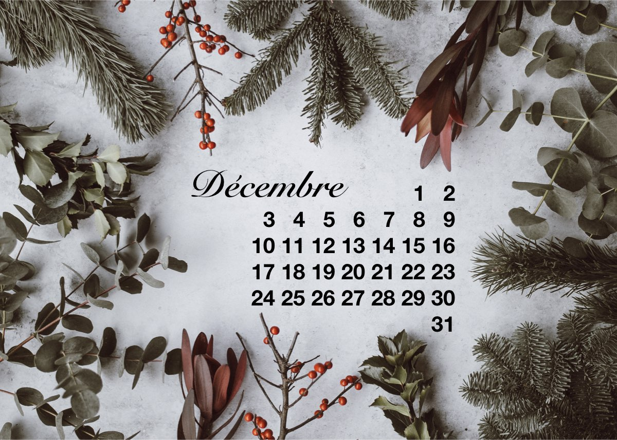 calendrier de l'avent 2018 sapin eucalyptus - blog déco - Clem around the corner
