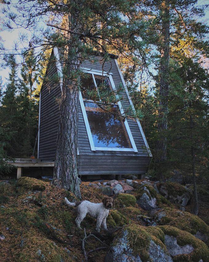 cabane dans les bois vue chien forêt énorme rocher terrasse reflet blog déco clem around the corner