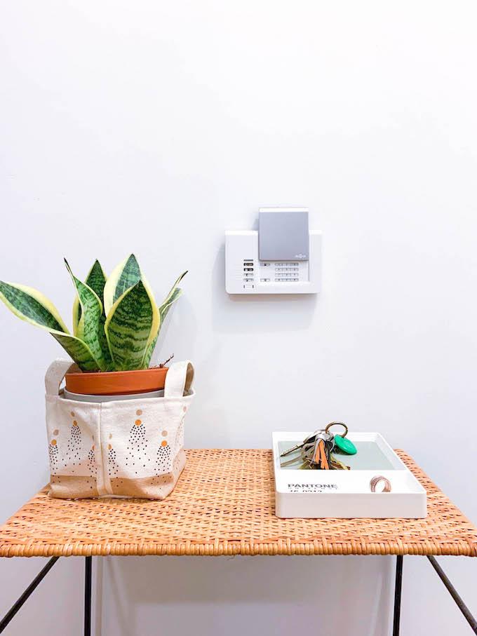 diagral e one entrée alarme connectée sécurité plante table rotin blog déco clem around the corner