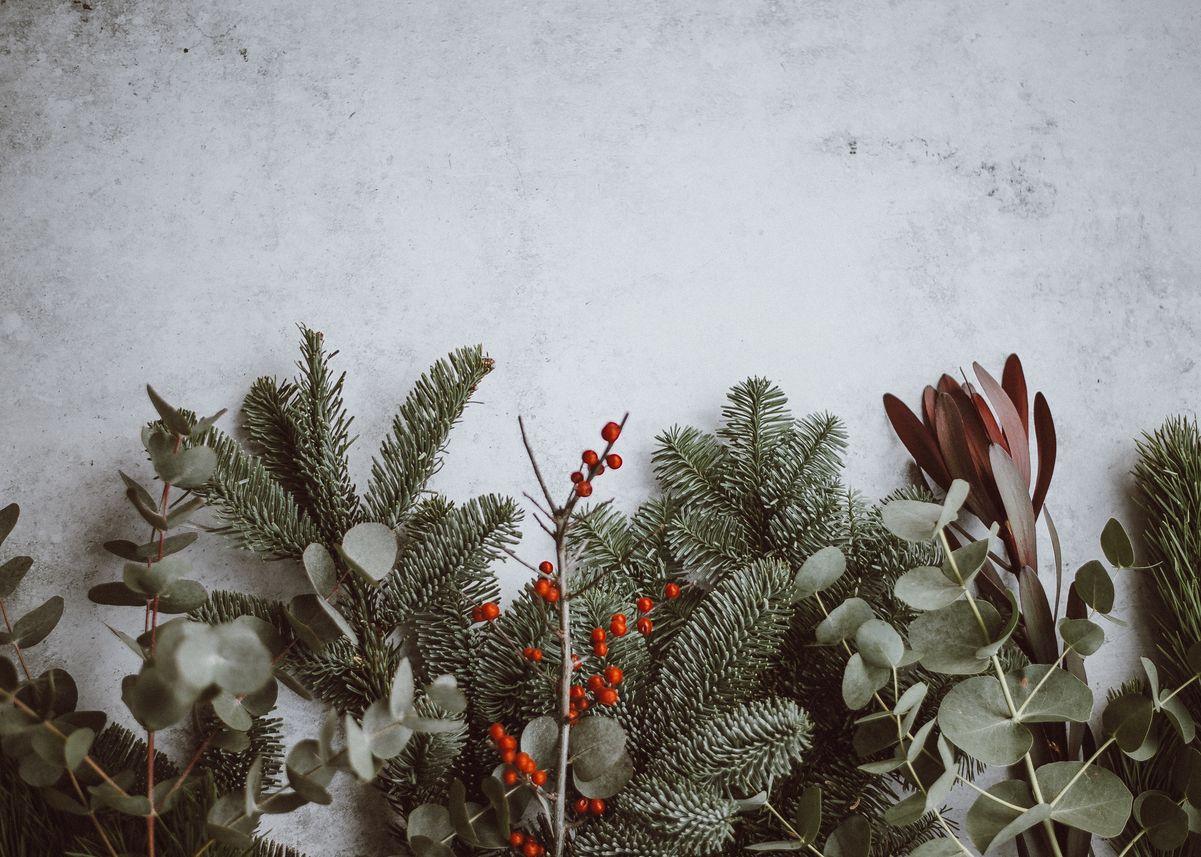 noël écologique décoration végétale feuilles eucalyptus branches sapin blog déco clem around the corner