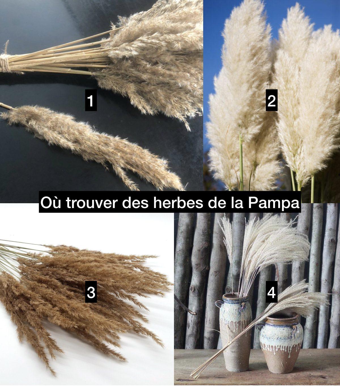 trouver acheter herbe de la pampa déco mariage boheme - clem around the corner