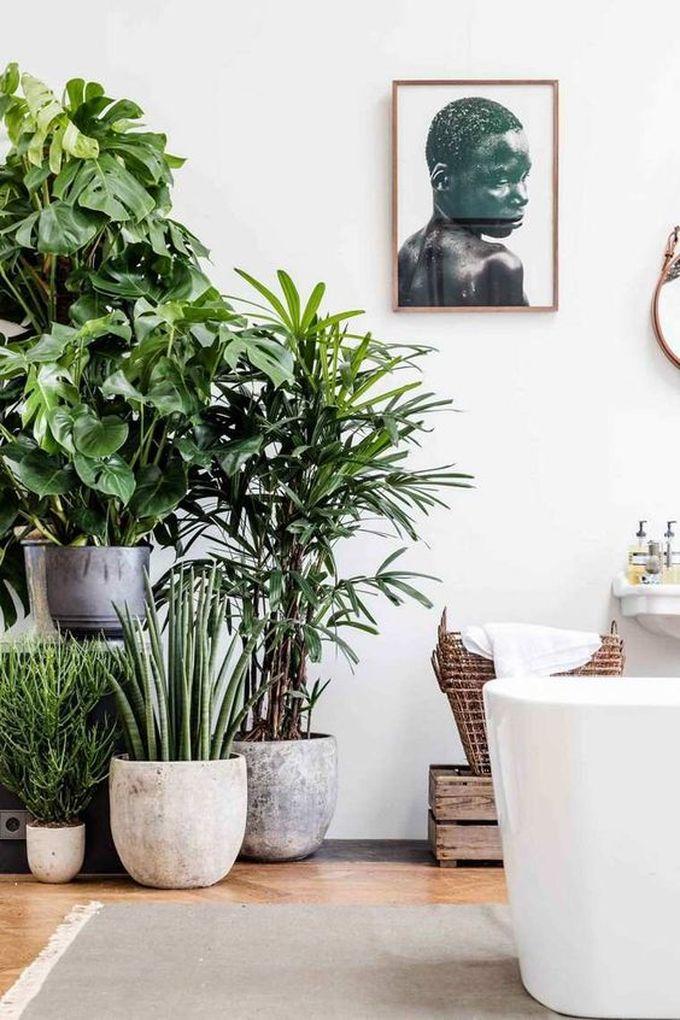 salle de bain ambiance zen plante verte pots rangements décoration blog déco clem around the corner