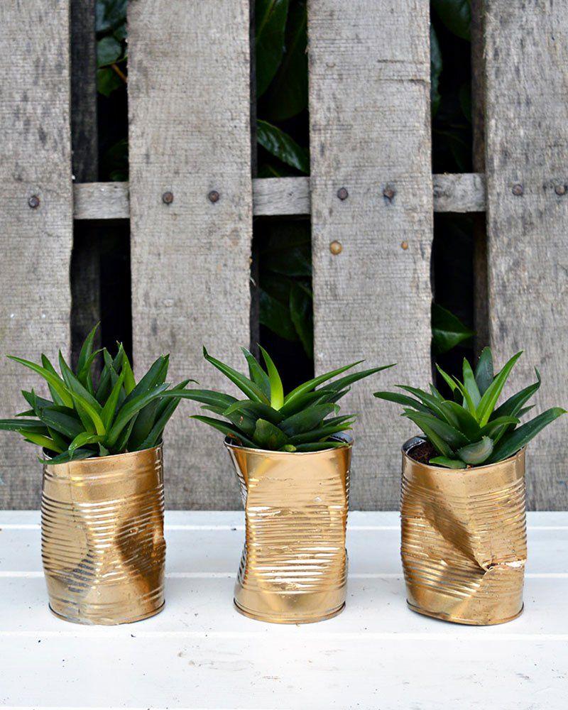 zéro déchet boite conserve diy style industriel doré métal cache pot - blog déco - clem around the corner