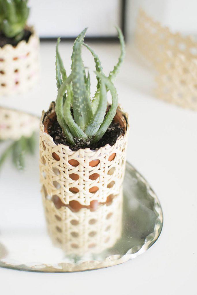 masquer son pot de fleurs terre cuite - blog déco - clem around the corner