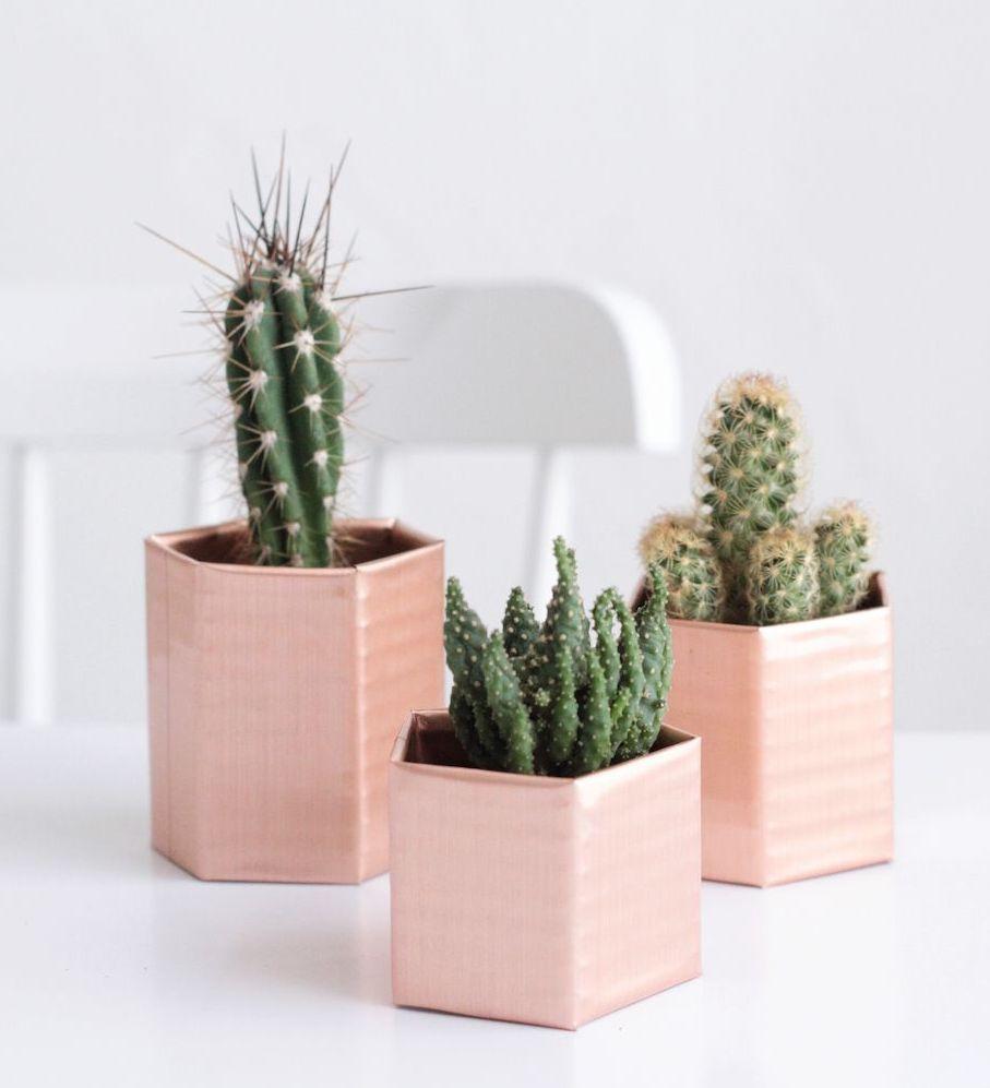 cache pot carton rose métallique recyclage diy plante grasse jardin - blog déco - clem around the corner