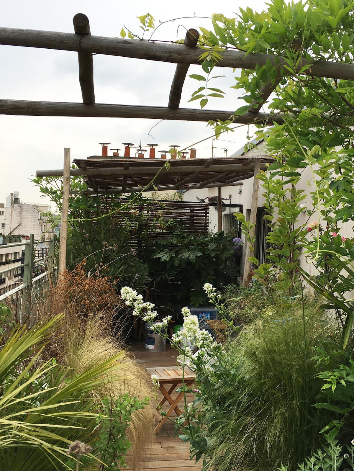 plantes balcon exposition sud terrasse fleuri végétal - blog déco - clem around the corner